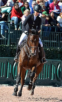 Eight Total FEI Competitions Approved for Tryon International Equestrian Center