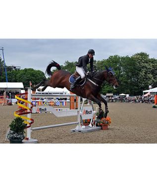 Dermott Lennon Leaps to Victory on Last Day of Royal Windsor 2015