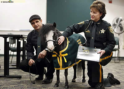 Special Ceremony Honoring Therapy Horse Magic