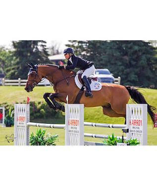 Amy Millar and Heros Win $10,000 Karson Open Welcome at Ottawa International Horse Show