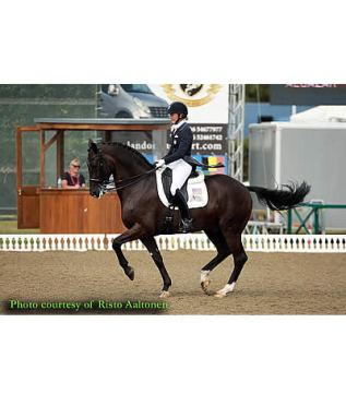 Freestyle Competition Results in High Scores at Hickstead for Bateson-Chandler and Alcazar