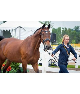 US Pan American Dressage Team Has Sights Set On Olympic Qualification