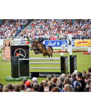 Danielle Goldstein and Carisma Shine at FEI European Championships in Aachen