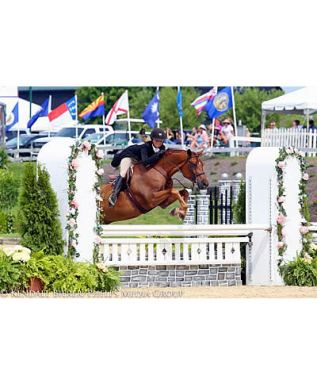 Taylor St. Jacques & Glynhafan Red Kestral Take Large Regular Pony Hunter Tricolor