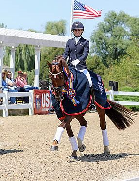 Gallant Reflection HU & WakeUp Earn Titles at USEF Young & Developing Horse Nat'l Championships