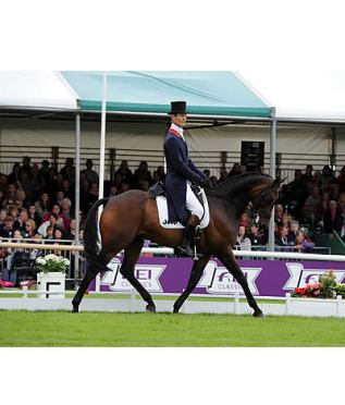 Fox-Pitt Raises the Stakes with Joint Dressage Lead at Burghley