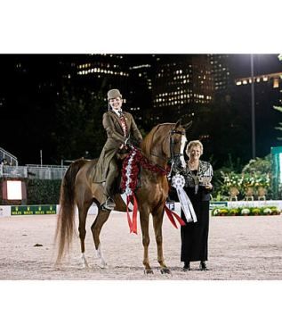 Champions Crowned at US Open Arabians as Rolex Central Park Horse Show Begins