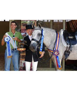 Zerbino Interagro Proves Talent and Temperament at IALHA National Championships