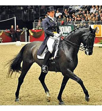 World Class Dressage Riders Reveal Training Tips at Olympia, the London International Horse Show