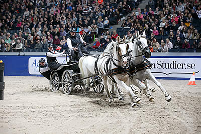 Chardon Wins FEI World Cup Driving in Stockholm