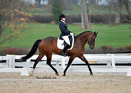 Inspirational Adult Amateurs and Olympians Are Highlight of Second Day of US Dressage Finals