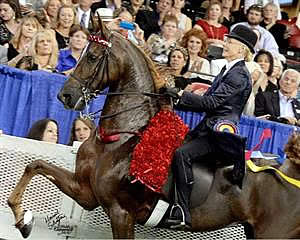 Goth Wins USEF Equestrian of the Year Title at 2015 Pegasus Awards