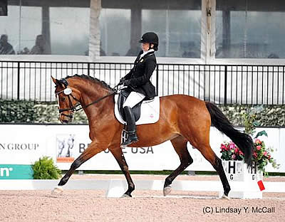 Team USA Wins Another CPEDI3* in Wellington and Dominates Competition
