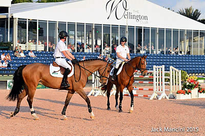 Winter Equestrian Festival Sport Horse Auction Presentation Set to Begin Tuesday, February 23