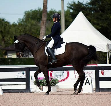 Ann Romney Honored by Premier Equestrian at 2016 Adequan Global Dressage Festival