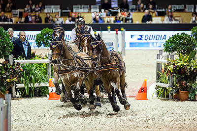 Koos de Ronde Takes the Lead in the FEI World Cup Driving Final in Bordeaux