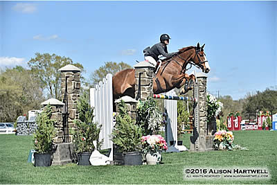 This Bud's for Brennan and Sun Tzu, Winners of the $35,000 Budweiser Grand Prix