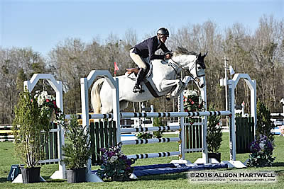 $7,770 Hester Equestrian, LLC Jumper Classic Awards Steffee and Warsteiner the Blue