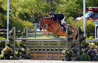 Louise Serio and Rock Harbor Capture Grand Hunter Championship at Old Salem Farm
