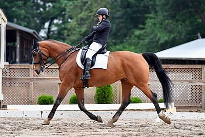 Collier and Hardin Secure Top Honors at USEF Para-Equestrian Dressage National Championships