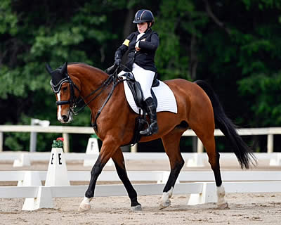 Collier and Western Rose Earn USEF Para-Dressage High Perf. Division National Championship