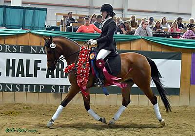 Beon Alla Czar Earns the Horse of Course High Score Award