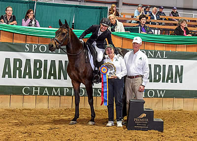 Beth Noteman Recognized at 2016 Sport Horse National Arabian Championships