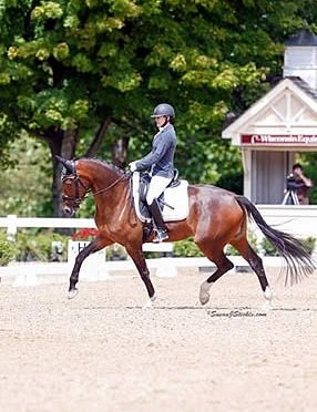 Amy Speck-Kern Places Top in Nation at Young Horse Championships