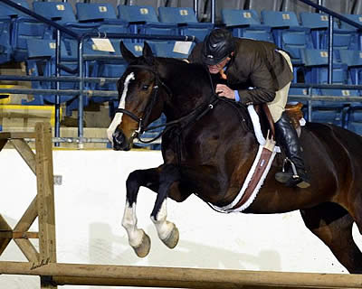 Stonewall Country Horse Shows Kick Off at the Virginia Horse Center This Weekend