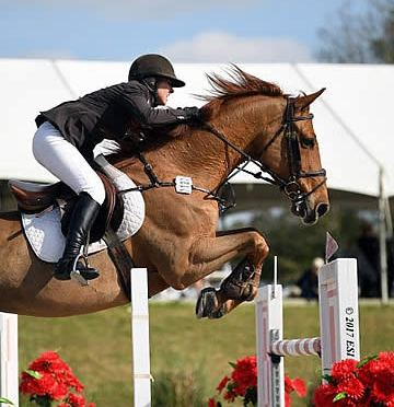 Dorothy Douglas Wins $50,000 HITS Grand Prix at Ocala Week III