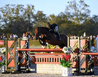 Patricia Griffith Wins $50,000 USHJA International Hunter Derby at HITS Ocala