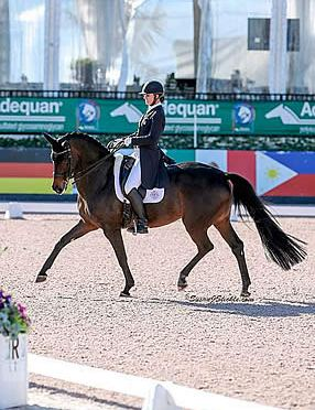 Lyle and Horizon Top 31 Entries in FEI Prix St. Georges CDI 1* at AGDF 10