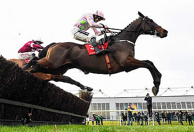 Willie Mullins Looking to Rule the Punchestown Festival Again