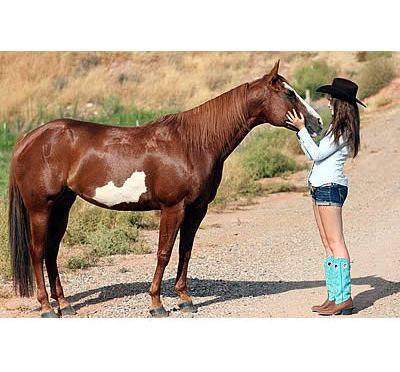 Meet Alena: Equestrian Aid Foundation Grant Recipient Hopeful for a Bright Future
