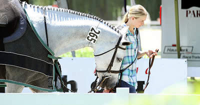 Equestrian Aid Foundation Announces New Horse Show Program