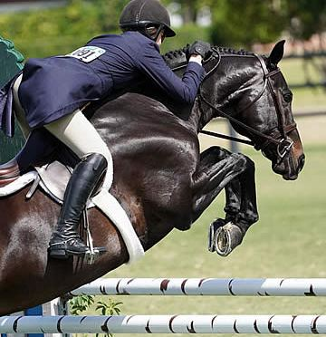 "Jennifer Hannan and Mindful Win $15k USHJA International Hunter Derby ""Hunt and Go"""