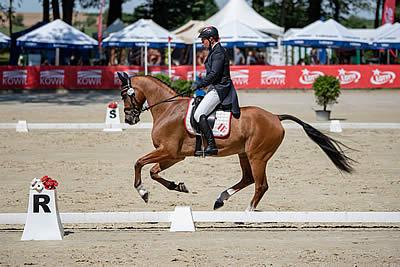 Strzegom Horse Trials: Dressage Day 2