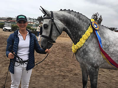 Sportsmanship Takes Center Stage at Arabian Horse Association Sport Horse Nationals