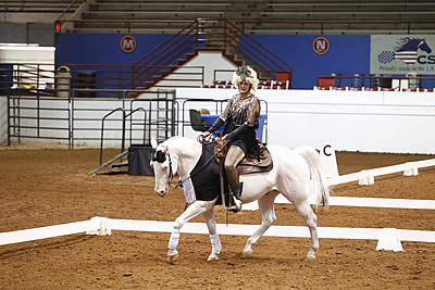 Deaf Horse Dazzles at Western Dressage World Show
