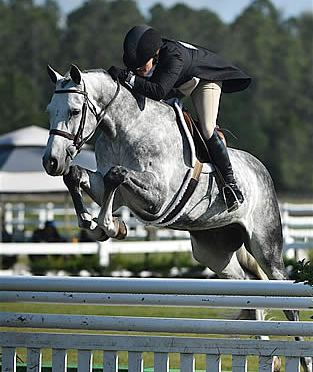 Kelley Farmer and Namely Win $25,000 USHJA International Hunter Derby