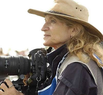 Award-Winning Equestrian Journalist Diana De Rosa to Visit Because of Horses Friday, May 24