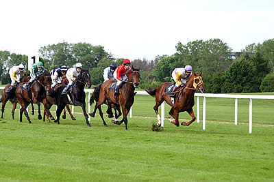 United States' Popular Sport of Horse Racing
