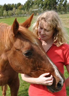 Living connection: Robin Marshall with her 30-year-old horse, Bill. Bill's great great grandfather is Night Raid, the stallion who fathered Phar Lap.