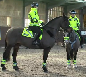 Special constables are using their own horses to patrolling rural areas of Norfolk, England.