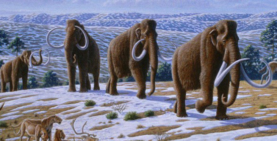 Mammoths on the tundra. Heinrich Harder
