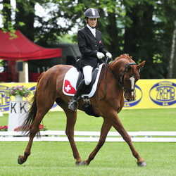 Andreas Dibowski and Songline 2 lead the CIC2* competition.