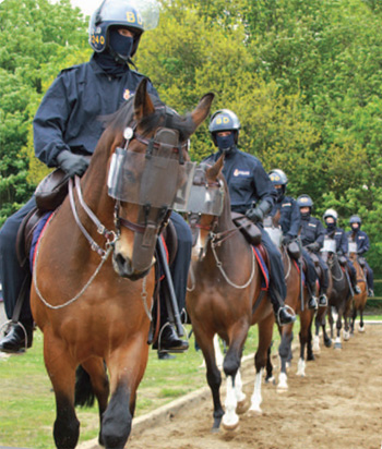 Lancashire's public order display at the centenary.