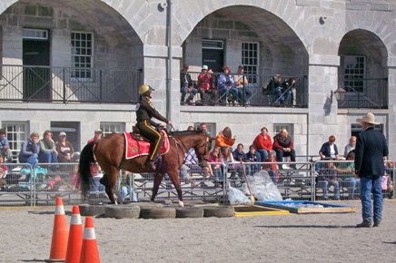 A police horse goes through a test at an earlier event.