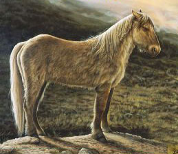 An artist's impression of the Yukon Horse, dating back 26,000 years. © Yukon Beringia Interpretive Centre