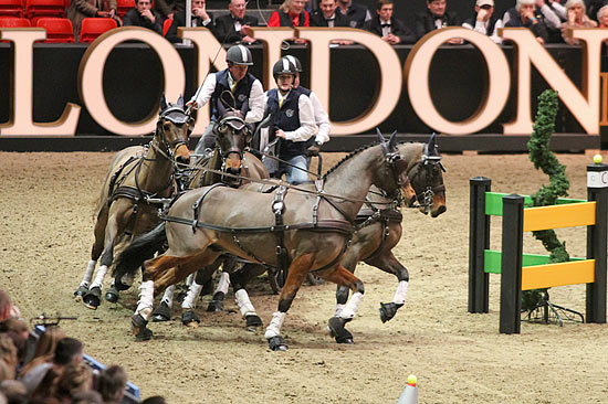 Boyd Exell competing at Olympia on a wild card, flew to victory in the FEI World Cup Driving qualifier.